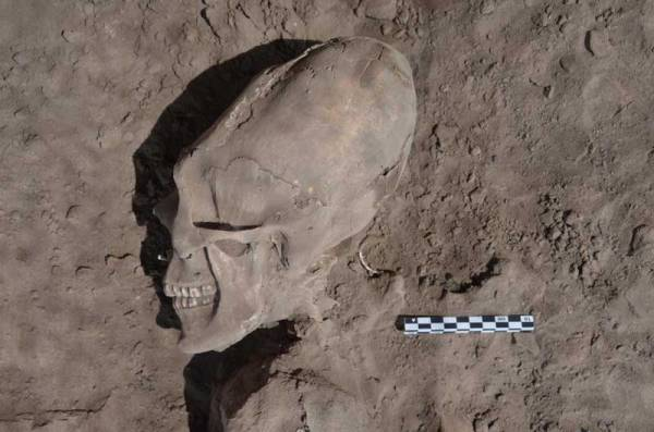 Mexico's National Institute of Anthropology and History (INAH) released this photo of an alien-like skull uncovered in Sonora.
