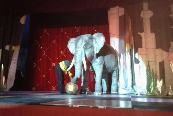 Big Yorgi is a $50,000 robotic elephant built to pre-empt the ban on circus animals.