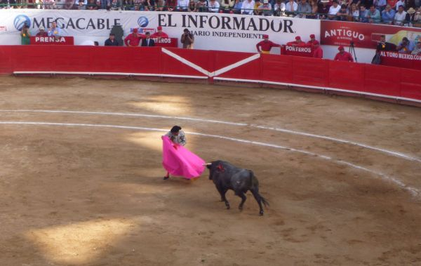 """I think it's the most macho sport of all,"" says Karla de los Angeles of bullfighting."