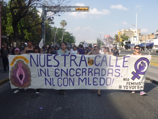 There has been a significant rise in the number of killings and disappearances of women in Jalisco in recent years.
