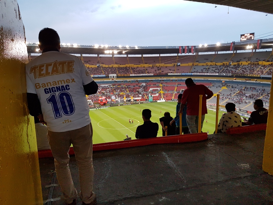 Gignac has won two Liga MX titles since joining Tigres in 2015.